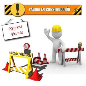 construccionew